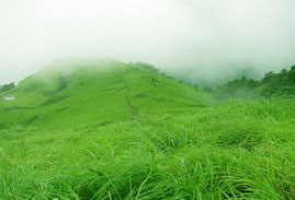 Tourist Places in Kannur
